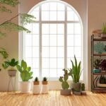 Not only are houseplants aesthetically pleasing, they can also make your home happier and healthier. The process of photosynthesis can help purify the air and regulate humidity in your home. Also, indoor plants can improve your mood and decrease stress! With benefits like this, we want to have houseplants in every room! So, here are […]